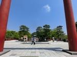 今日の八幡宮.JPG