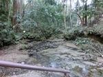 渓流発見.JPG